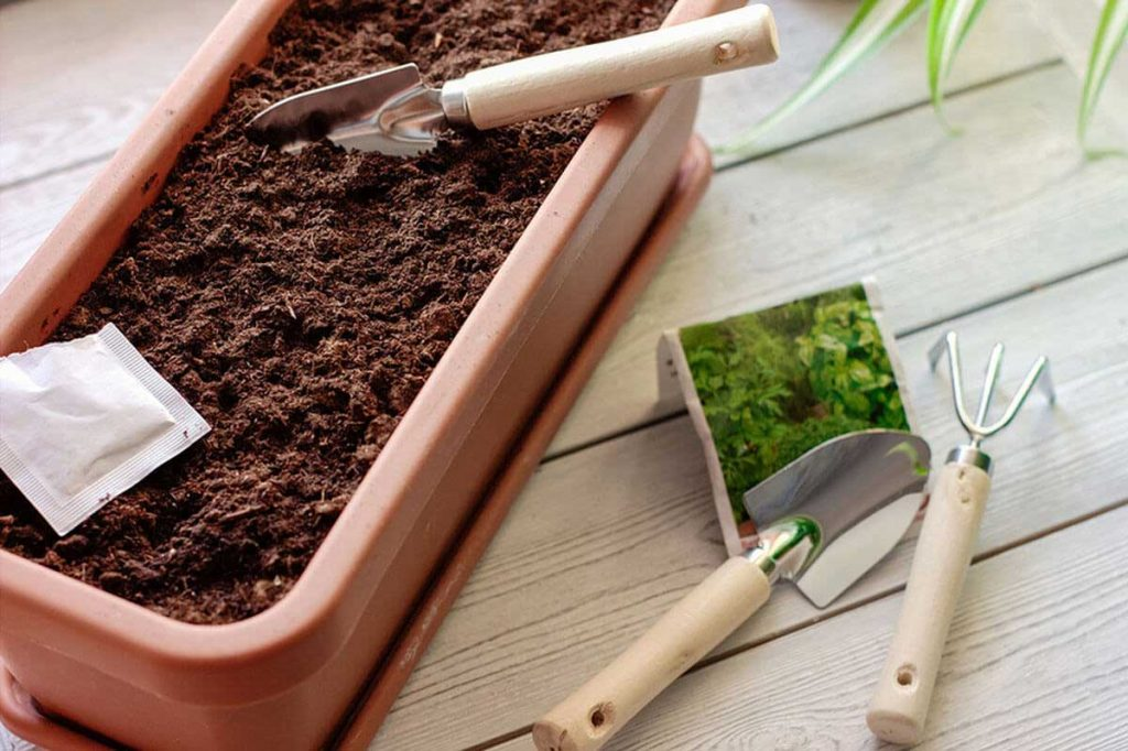 Best Soil for Cannabis Growing
