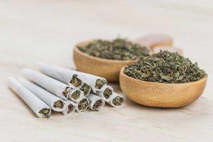 Smoke Weed 101