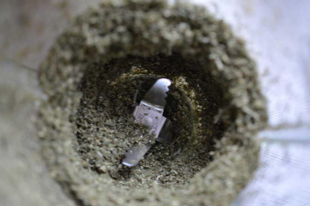 Cannabis Dry Sifting