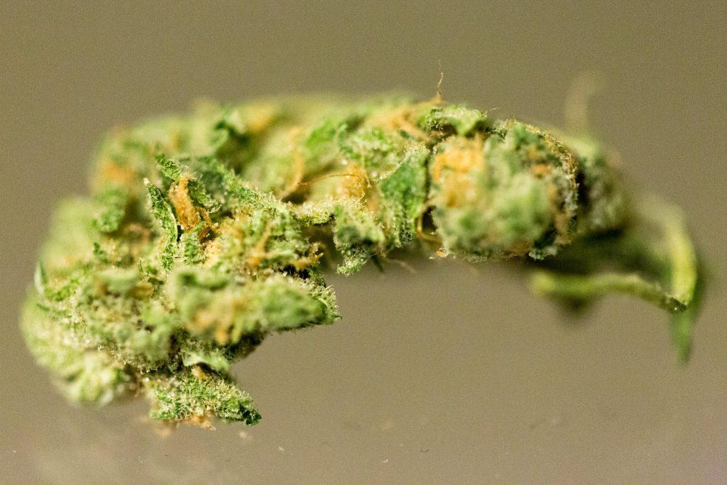 high thcv strains